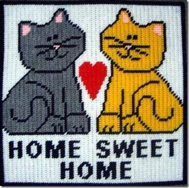 Cats home sweet home